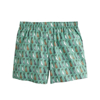 J.Crew Dogs With Antlers Boxers