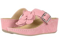 David Tate Spring Pink Suede Clog Mule Shoes