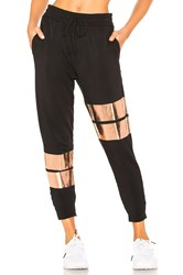 Vimmia Soothe Shine Jogger Black
