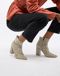 1a382c6d5f3 Public Desire Empire Snakeskin Block Heeled Ankle Boots As Image Multi