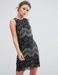 Oasis Metallic Shift Lace Dress Multi
