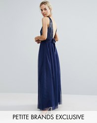 Little Mistress Petite Allover Sequin Bow Back Tulle Prom Maxi Dress Navy