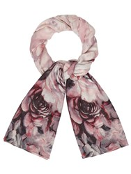 Phase Eight Alice Printed Scarf