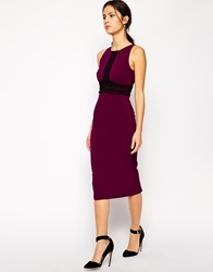 Vesper Gina Pecil Dress With Lace Panel Detail Berry