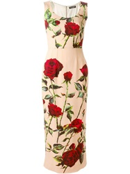 Dolce And Gabbana Rose Print Pencil Dress Nude And Neutrals