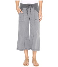 Xcvi Ayara Crop Pants Mood Indigo Women's Capri Navy