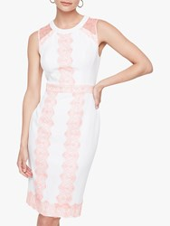 Damsel In A Dress Akria Lace Panel Ivory Pink
