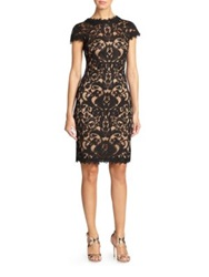 Tadashi Shoji Cord Embroidered Lace Cocktail Dress Petal Bloom Black Nude Mocha Navy Nude