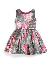 Zoe Sleeveless Floral A Line Dress Pink Gray Size 7 14 Pink Gray