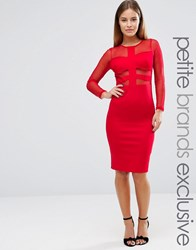John Zack Petite Long Sleeve Mesh Insert Bodycon Dress Red