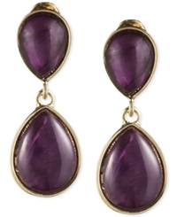 Jones New York Teardrop Stone Double Drop Clip On Earrings