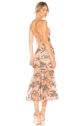 X By Nbd Felicity Embroidered Dress Pink