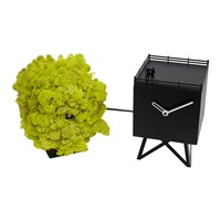 Progetti Bird Watching Cuckoo Clock Black Moss