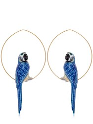 Nach Blue Parrot Hoop Earrings Multicolor