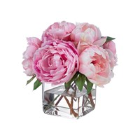 Diane James Pink Peonies