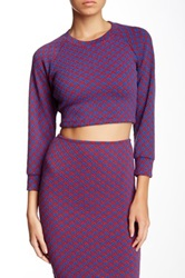 American Apparel Long Sleeve Crop Raglan Sweater Multi