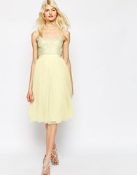Needle And Thread Coppelia Embellished Ballet Tulle Dress Lemon Pink