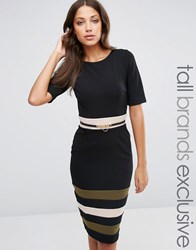 Paper Dolls Tall 1 2 Sleeve Belted Pencil Dress With Stripe Skirt Black Khaki