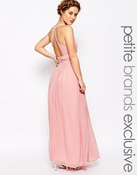 True Decadence Petite Plunge Front Open Back Maxi Dress Blush