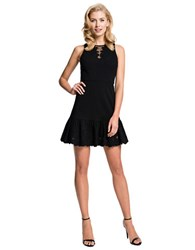 Cynthia Steffe Holland Fit And Flare Dress Rich Black