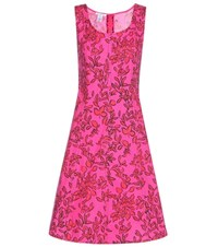 Oscar De La Renta Printed Cotton Dress Pink