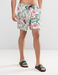 Asos Swim Shorts In Pink Tropical Floral Print With Triangle Logo In Mid Length Pink