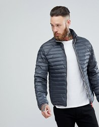Hunter Padded Mid Layer Jacket In Grey Dsl