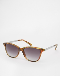 French Connection Clubmaster Sunglasses Brown