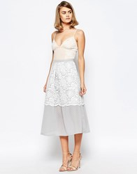 Lost Ink Occasion Skirt With Lace Overlay Detail Multi