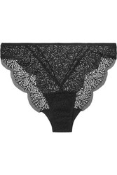 Else Fiona Scalloped Stretch Lace Briefs Black