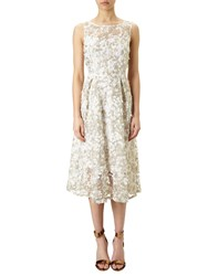 Adrianna Papell 3D Lace Fit And Flare Midi Dress Ivory Gold