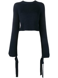 Ellery Cropped Ribbed Jumper Blue