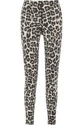 Bottega Veneta Leopard Print Stretch Cotton Blend Jersey Tapered Pants Charcoal