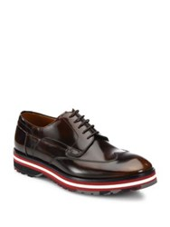 Bally Morely Wingtip Leather Oxfords Brown