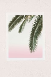 Urban Outfitters Wilder California Hanging Palm Art Print No Frame