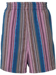Paura Striped Embroidered Shorts Blue