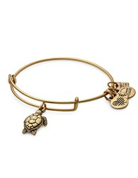 Alex And Ani Sea Turtle Charm Bracelet Gold