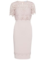 Gina Bacconi Crepe Dress With Guipure Trim And Overtop Ballet Pink