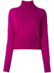 Societe Anonyme 'Charlize' Turtleneck Pullover Pink Purple