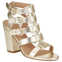 And Or Iris Buckle Strap Block Heeled Sandals Gold