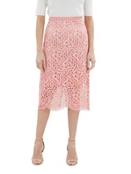 Jaeger Ombre Lace Pencil Skirt Pink Lace