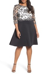 Tadashi Shoji Plus Size Women's Three Quarter Scuba Knit Sleeve Dress Black Ivory