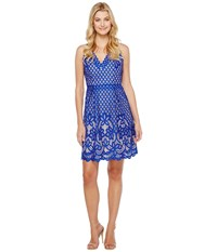 Adrianna Papell V Neck Halter Giselle Lace Fit And Flare Dress Ultramarine Bisque Women's Dress Blue
