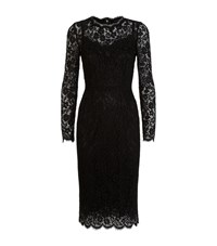 Dolce And Gabbana Lace Pencil Dress Female