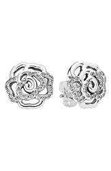 Pandora Design 'Shimmering Rose' Stud Earrings Silver Clear