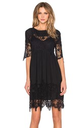 Velvet By Graham And Spencer Iulia Audrey Lace Short Sleeve Dress Black