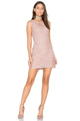 Bb Dakota Thessaly Dress Blush