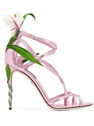 Dolce And Gabbana Kiera Lily Embroidered Sandals Pink