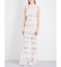 Elie Saab Sleeveless Sheer Floral Lace Gown Porcelaine