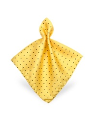 Forzieri Polkadot Twill Silk Pocket Square Yellow